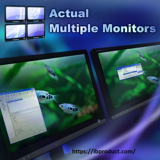 Actual Multiple Monitors 8.14.5 Crack With License Key Free Download