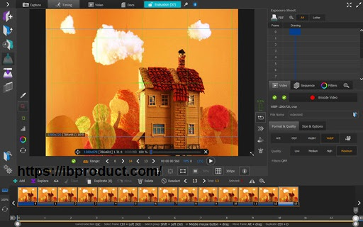 AnimaShooter Capture 3.8.16.2 Crack With License Key Free Download